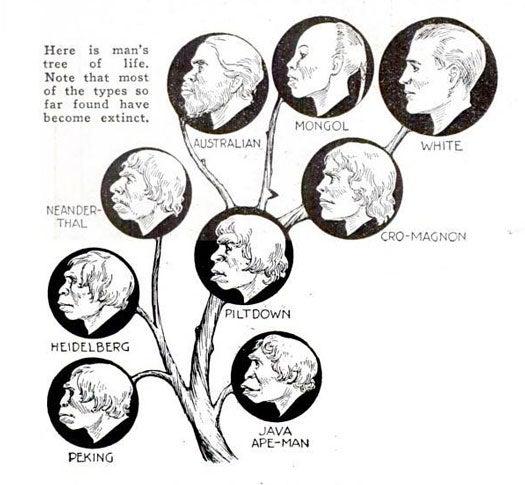 How Man-Apes Became Men: October 1931
