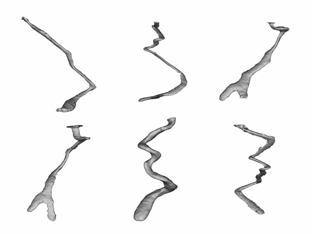 Three-dimensional scans of aluminum casts of burrows of three species of scorpion