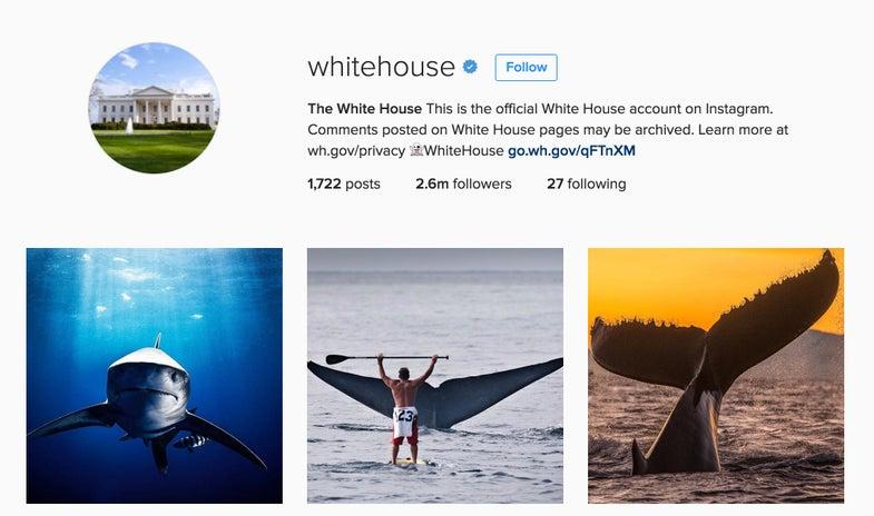 White House Instagram