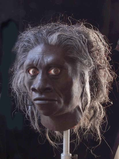 Future Human: Were Hobbits Victims of a Brain-Eating Disease?