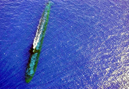 Japanese Company Hopes to Deploy Fleets of Submarines to Stop Typhoons