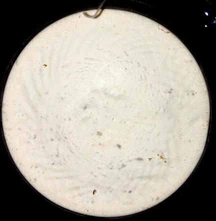 a microscope slide of sediment