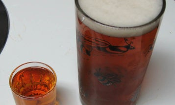 Drinking Alcohol May Make Head Injuries Less Harmful