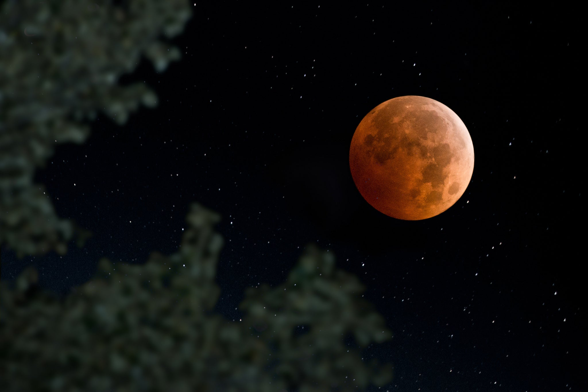 The First Supermoon Eclipse In 32 Years Happens This Sunday