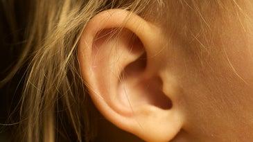 Ear biometrics
