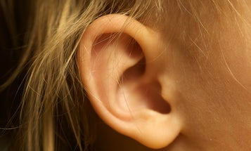 For the love of God, please stop sticking things into your ear