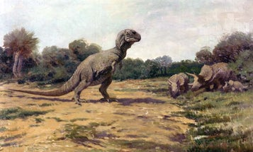 Kids Are Still Drawing 1900s Idea Of What Dinosaurs Looked Like