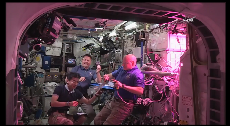 """Space-Grown Lettuce Tastes """"Awesome,"""" Astronauts Say"""