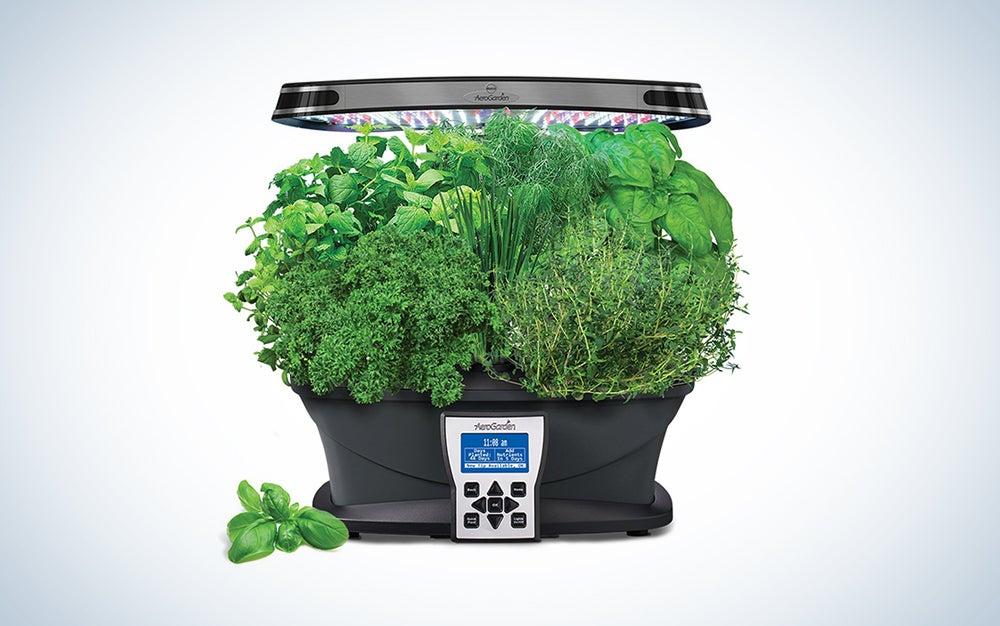 An indoor garden for 42 percent off? I'd buy it.