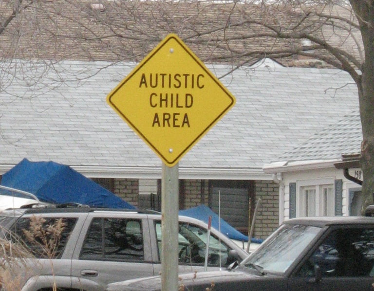 Are Environmental Factors to Blame for Autism?