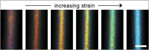 New Fiber Changes Color When It's Stretched