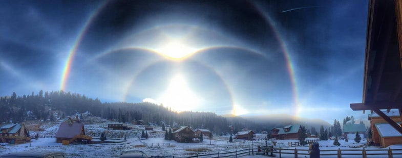 Ice Halos, Cheeky Hamsters, And Other Amazing Images Of The Week