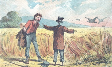 To Defeat Geese, Canadians Try Laser Scarecrows