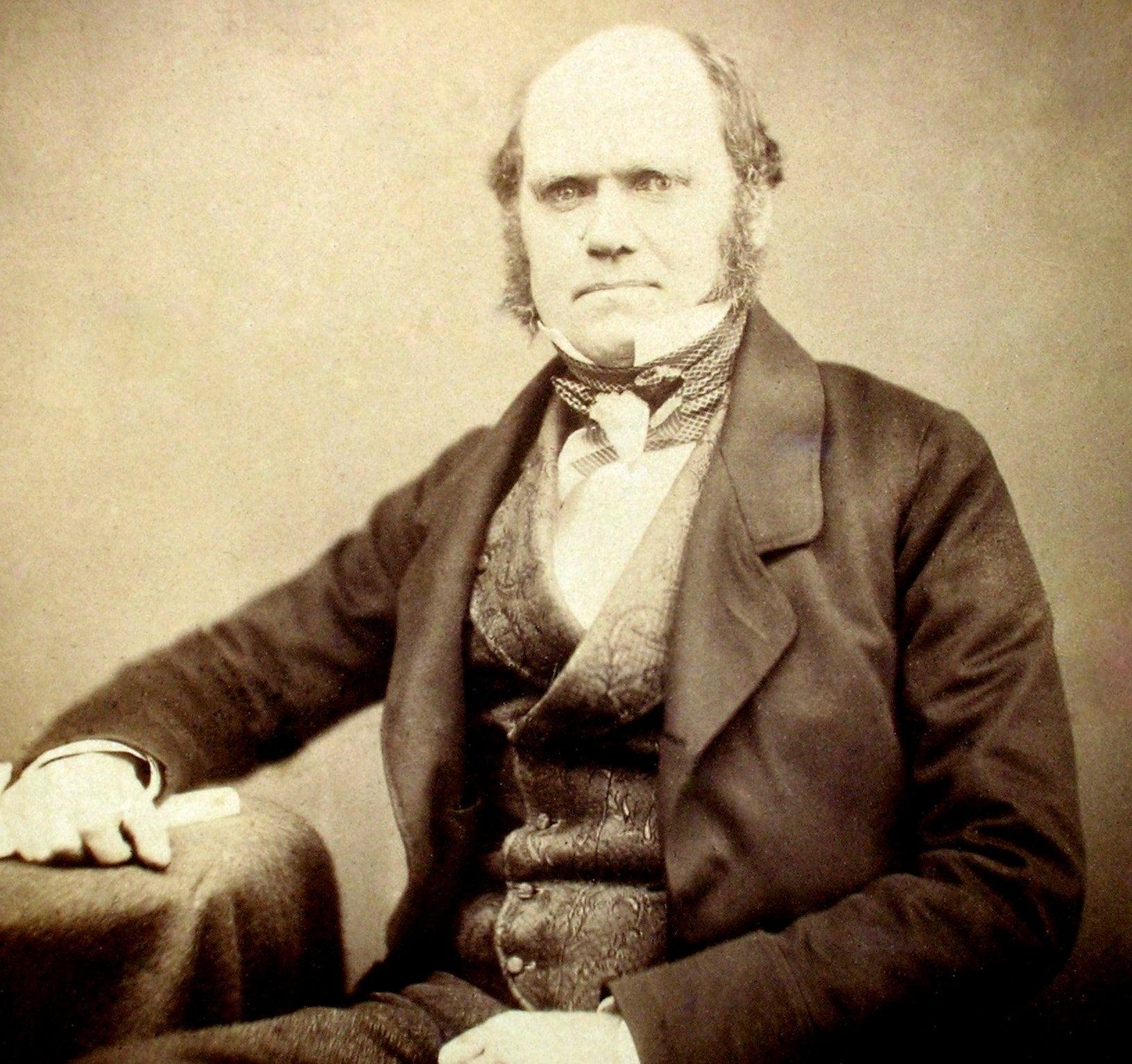 Letters Written By Charles Darwin From 1860