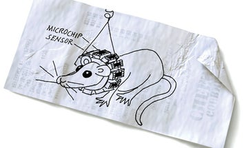 Building a Rodent-Sized, Wearable Brain-Imaging Device