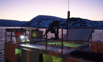 Arctic Report: How To Sell A Single Fish To 11 Different Countries