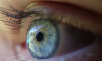 Why Are There More Blue-Eyed Alcoholics?