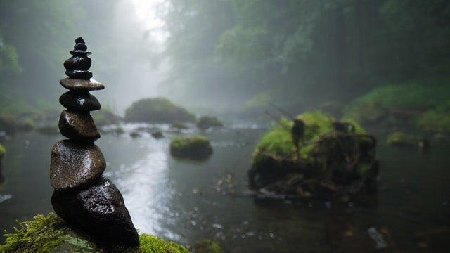 Our rivers and lakes contain a scary number of pesticides and pharmaceuticals