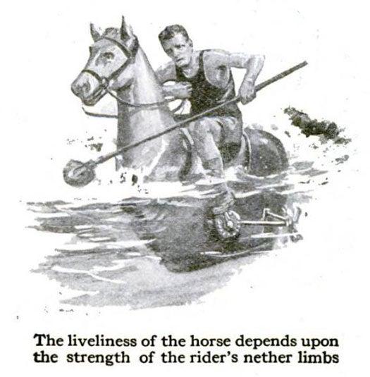 Aquatic Polo Ponies: July 1918