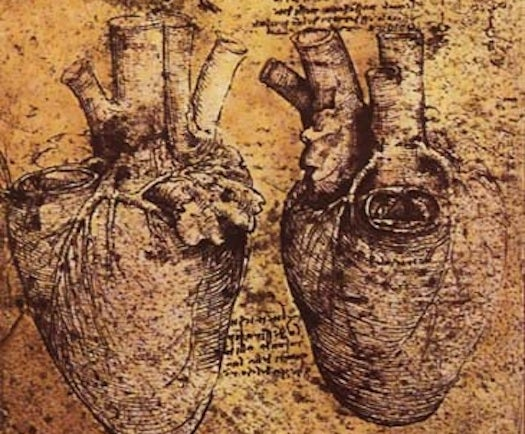 A Glue That Seals Heart Defects