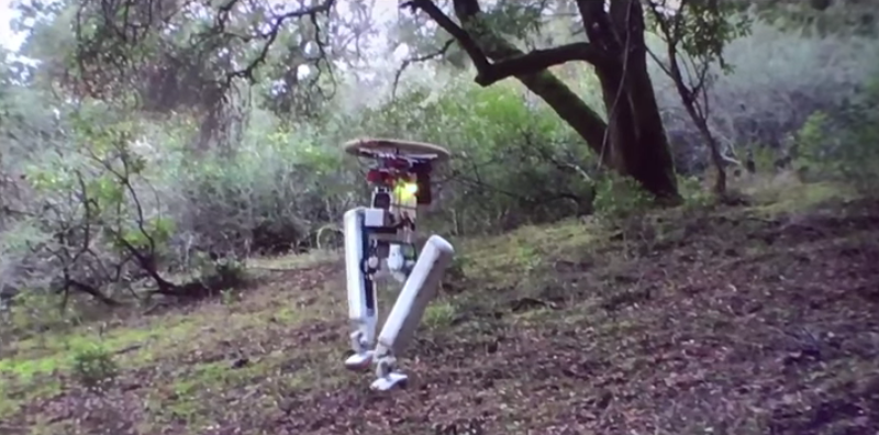 New Bipedal Robot Is All Legs