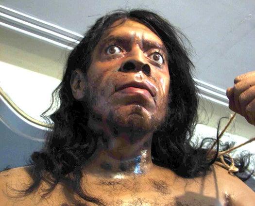 Harvard Professor Seeks 'Adventurous' Human Woman To Birth A Neanderthal Baby (Update)