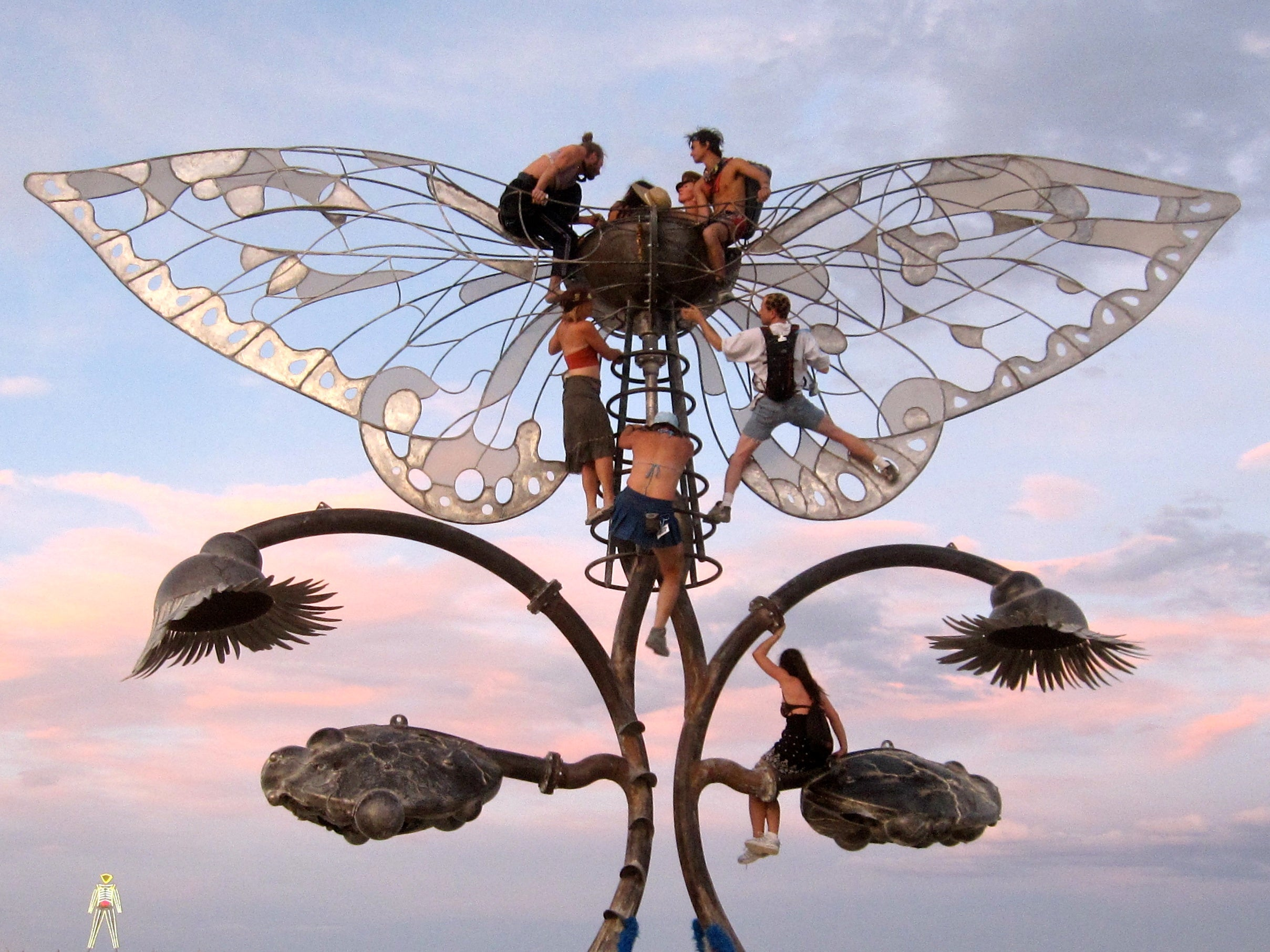 """""""Disgusting"""" Bugs That Infested Burning Man Not Actually Disgusting"""