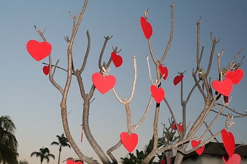 Valentine's Day Tips for Cavemen and Beetles