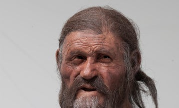 Iceman's Stomach Bug Gives Clues To Humans' Spread Into Europe