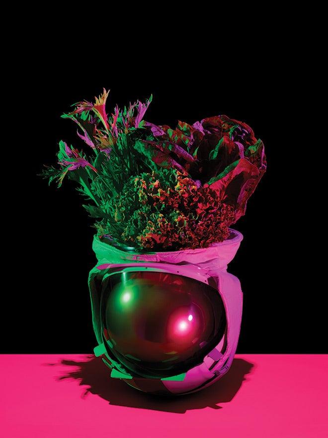 vegetables in astronaut helmet
