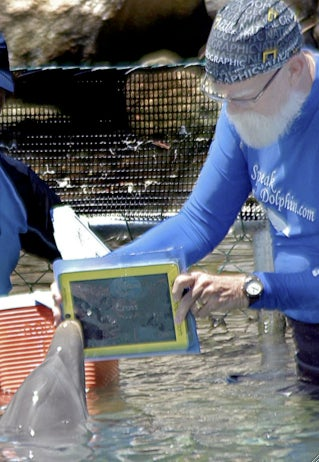 Early-Adopting Dolphin Uses iPad Touchscreen to Communicate with Humans