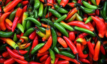 Love Of Spicy Food Is Built Into Your Personality