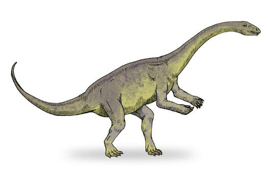 Long-Necked Giant Was Fastest-Growing Dinosaur