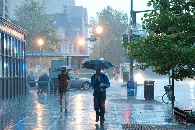 """""""Rainy"""
