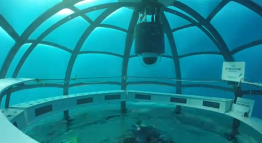 Underwater Greenhouses Offer Creative Solution To Food Crisis
