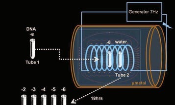 Can Our DNA Electromagnetically 'Teleport' Itself? One Researcher Thinks So