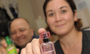 Victoria's Secret Perfume Wards Off Mosquitoes, Study Finds