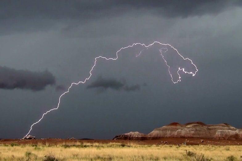 Lightning t-rex
