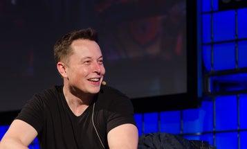 Elon Musk Reveals His Favorite Animal