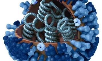 Synthetic Biologists Engineer A Custom Flu Vaccine In A Week