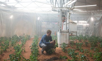 NASA Is Growing Potatoes In Peru To Simulate Martian Conditions