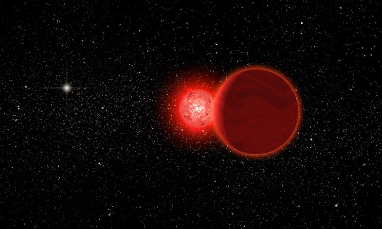 Scholz's Star