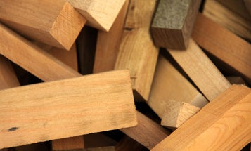 Machines Sniff Out Illegal Specimens Of Wood