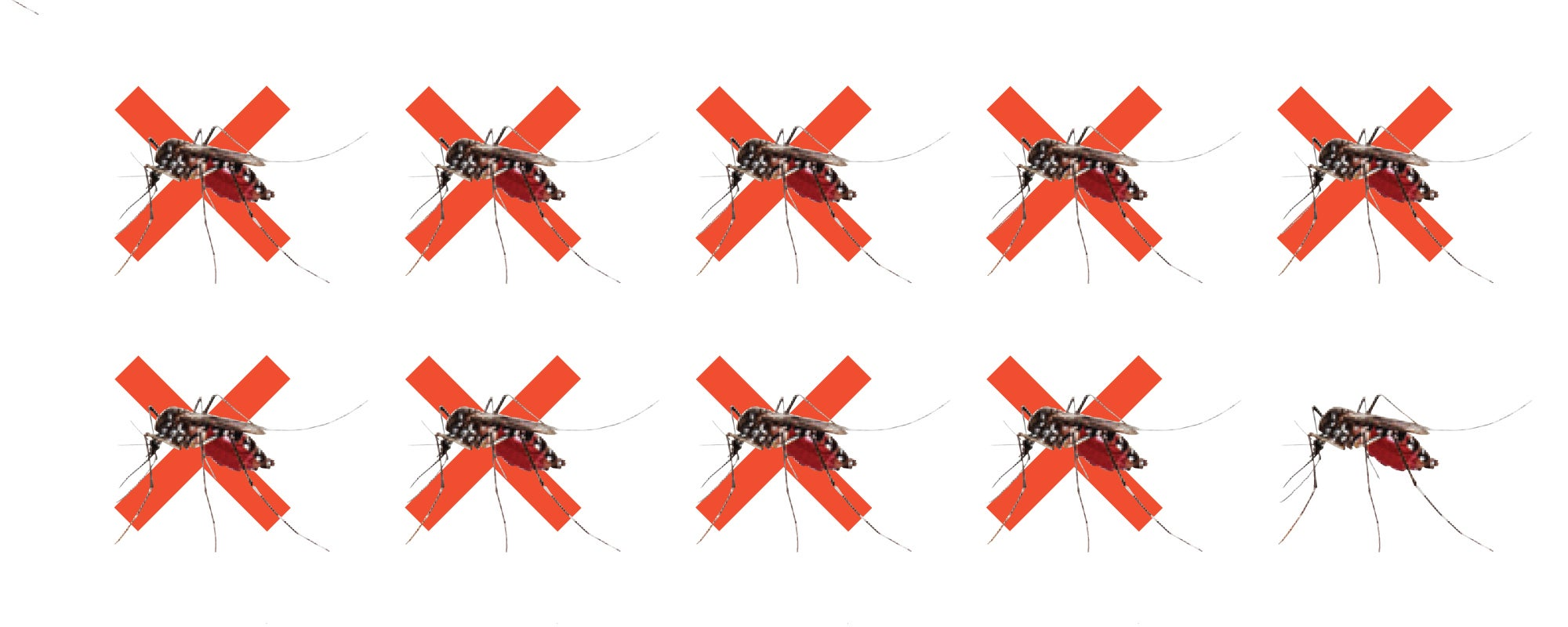 These Mosquitoes Are Designed To Self-Destruct