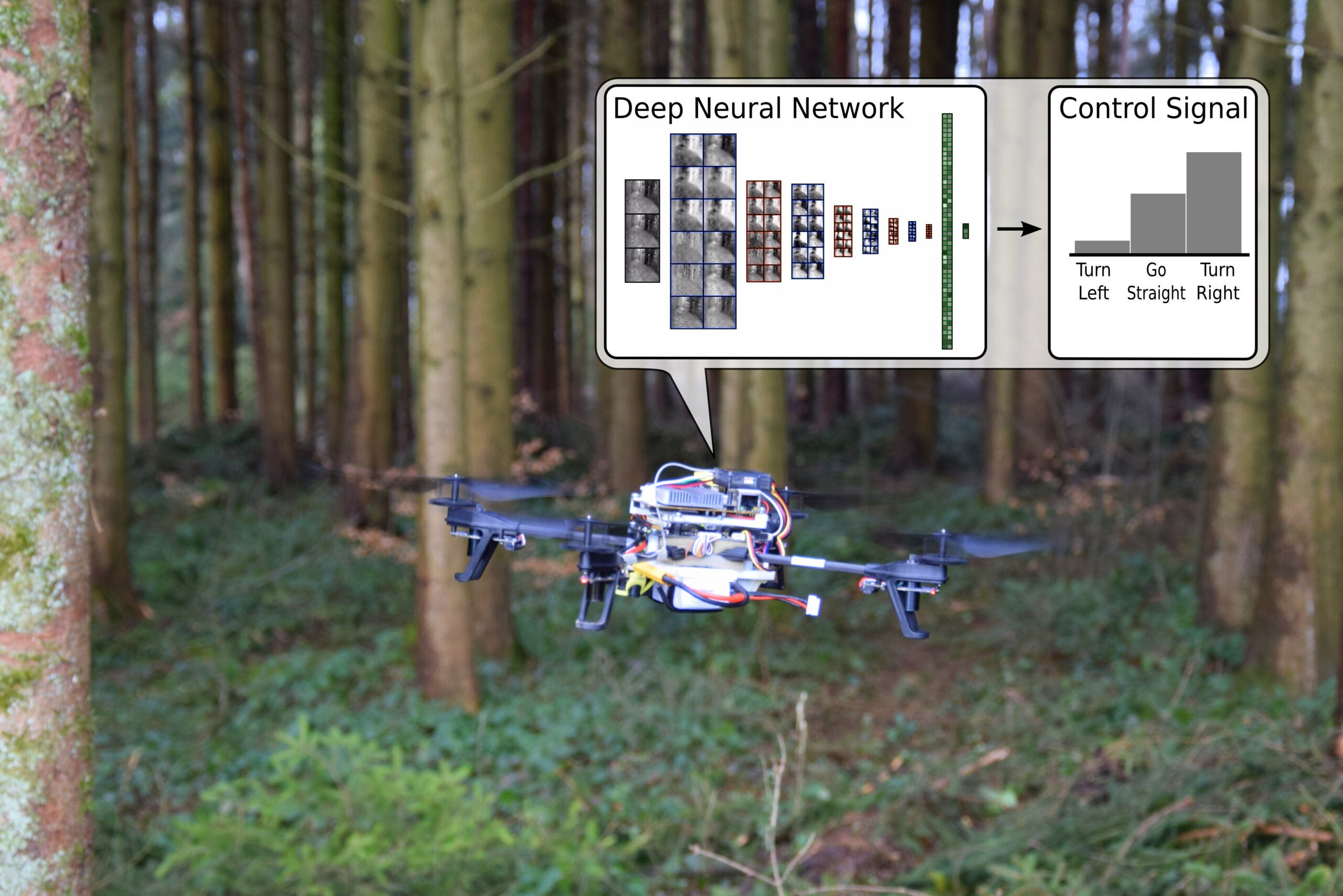 Drones Learn How To Find People Lost In The Woods