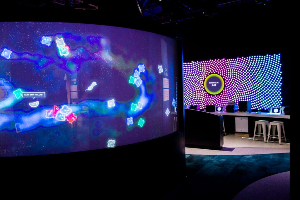 Vivid displays allow visitors to explore the fundamentals of biological systems.