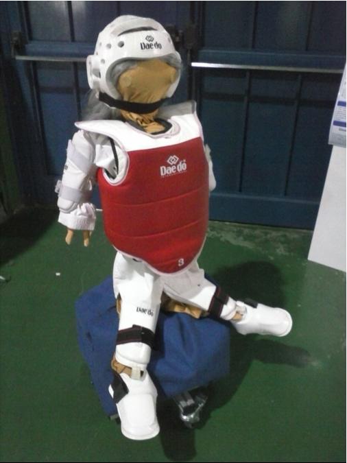 Taekwondo Personal Trainer robot