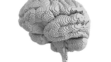 brain made out of tiny cubes
