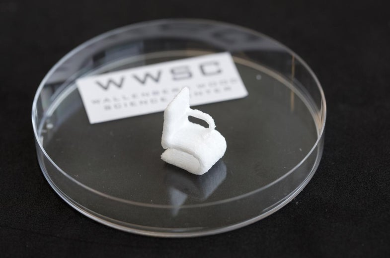 Now You Can 3D-Print Objects Made Of Wood Fibers
