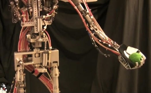 Watch This Awesome Robot Play Catch Better Than Your Dad